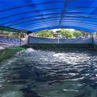 PVC coated tarpaulin for biofloc fish tank